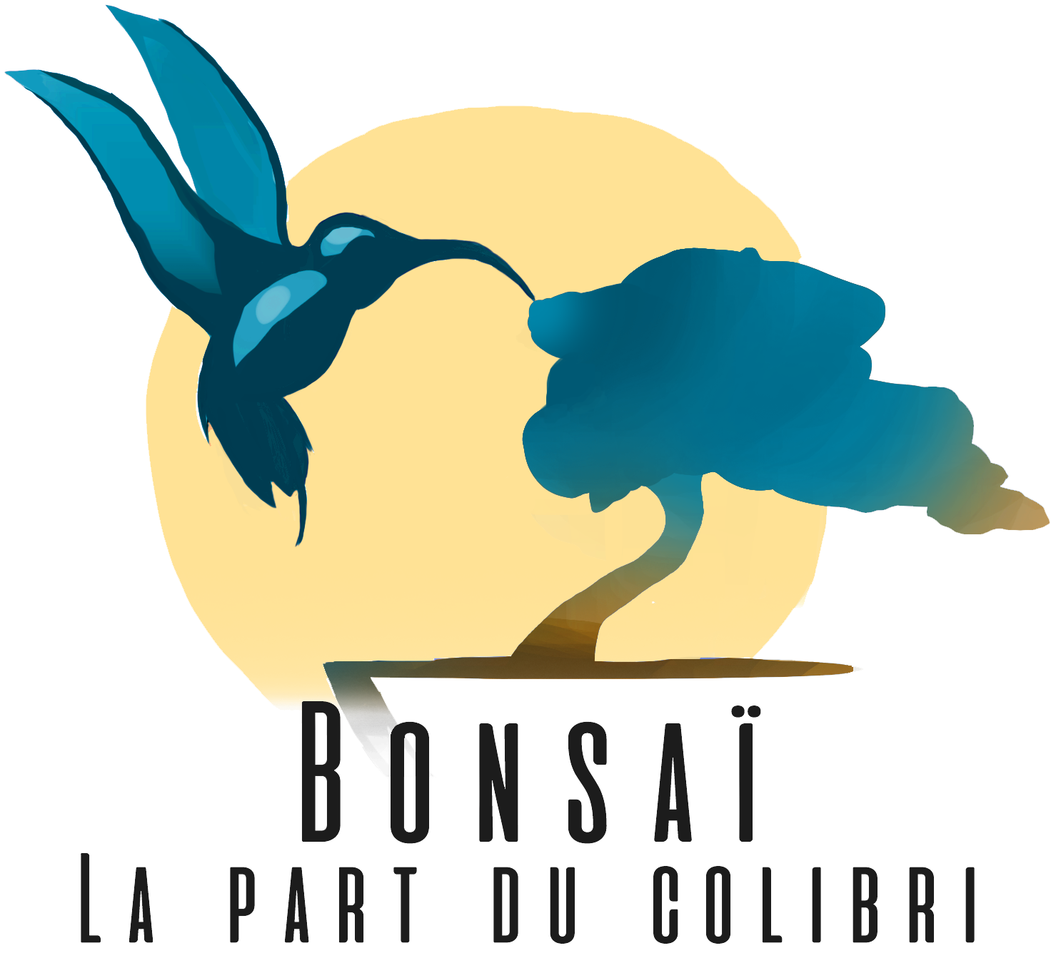 Bonsaï la part du colibri